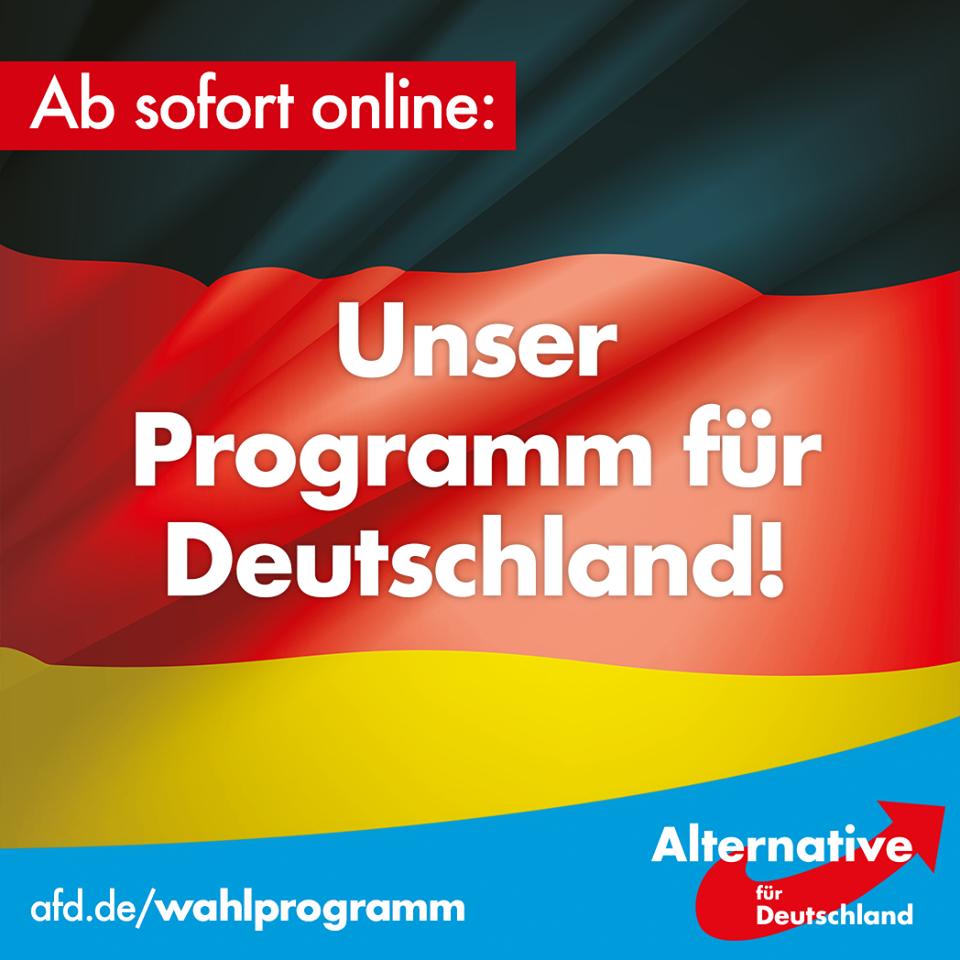 BTW17-AfD-Programm