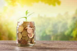 Plant growing in savings coins in a warm sunny afternoon. Plant growing from a pile of coins in a jar. Plant growing from little jar full of coins on wooden table with copy space. Business growth and investment concept.