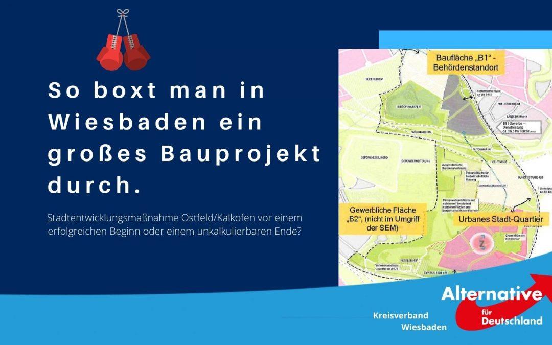 Man kann hier viel darüber lernen, wie in der Landeshauptstadt Wiesbaden Entscheidungen getroffen und durchgeboxt werden.